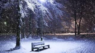 Winter Solitude - Instrumental by Prithvi Kantan