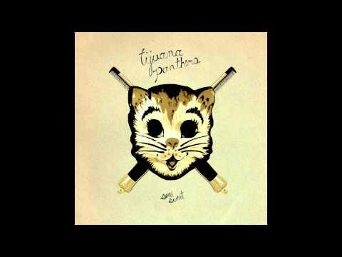 tijuana-panthers-tonys-song-because-music