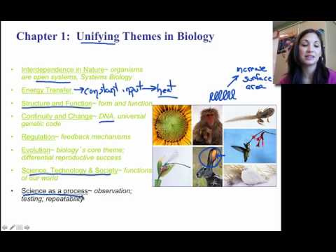 biology campbell chapter 2