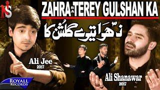 Ali Shanawar & Ali Jee | Zahra Terey Gulshan Ka | 2017 / 1439 width=