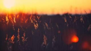 Knxwledge - SeentYew [Kaligraph E Remix]