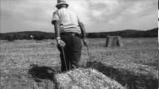 Dubfarmer feat. Mimmo Ammirati -INCONSAPEVOLE-