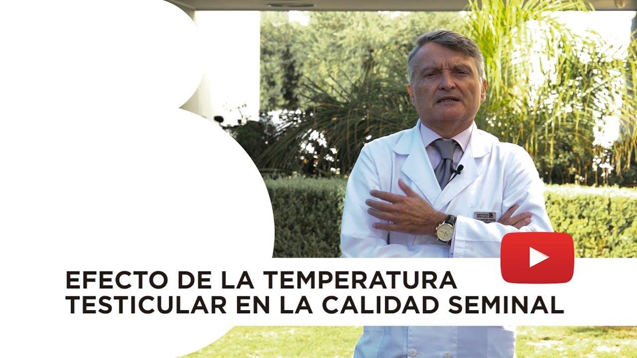 Efecto de la temperatura testicular en la calidad seminal