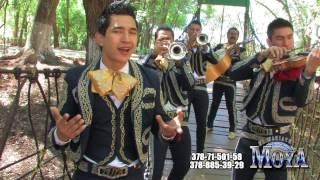 TE HUBIERAS IDO ANTES DE JULION ALVAREZ Y SU NORTEÑO BANDA VERSION MARIACHI MOYA