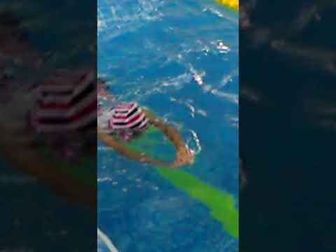 花蓮縣中正國小403打水接力比賽 1 - YouTube