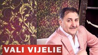 VALI VIJELIE - PUN PARIU ( promo 2013 )