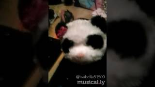 Spongebob  and plankton. Music. Ly #panda cover friend song