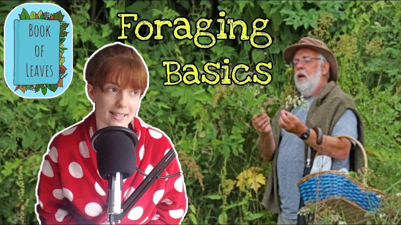 The Basics to start Foraging – Dermot Hughes, Forage Ireland