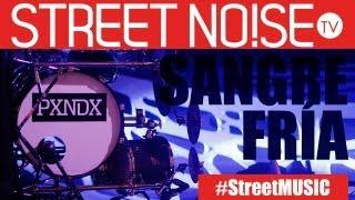 Sangre Fría (Live) - PXNDX