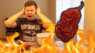 REALLY HOT (GHOST) PEPPER CHALLENGE!