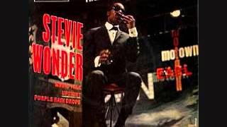 Stevie Wonder- Purple Raindrops