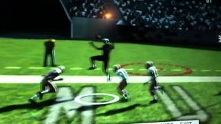 Larry Fitzgerald end zone catch madden 11