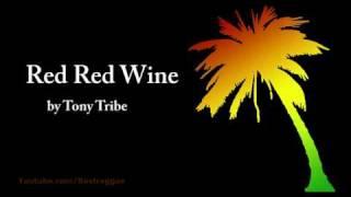 Red Red Wine - Tony Tribe (Lyrics)