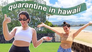 quarantine in hawaii vlog: a day in my life at home