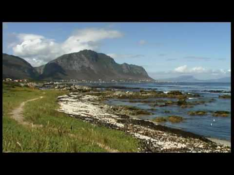 Betty's Bay – Western Cape – South Africa Travel Channel 24