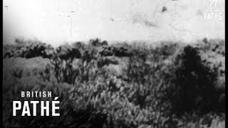 Missile Mishaps (1958)