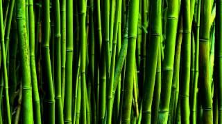 Shigeru Umebayashi - Jia Ren Qu (Topha Dub Remix) *HD*