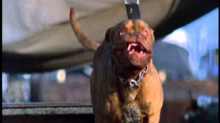 Turner And Hooch -  a muffin