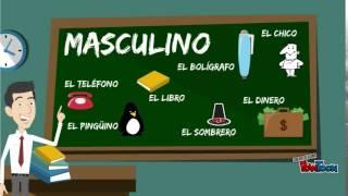 Masculino y femenino en español: regla general