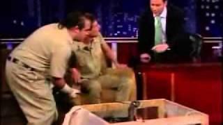 cobra anaconda pica apresentador de tv ao vivo