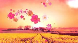 vinheta primavera