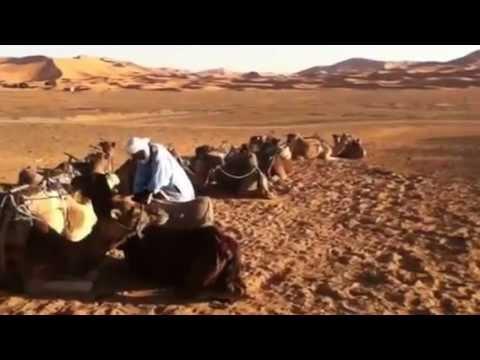 Best of Morocco –  www.intrepidtravel.com/morocco/best-morocco-43520