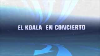 El Koala 2013 CONCIERTOS!!!