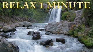 Relax 1 min - Waterfall - Relaxing Nature Sounds