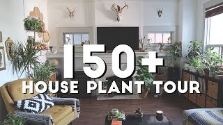 THIS WOMAN HAS OVER 150 PLANTS IN HER HOME | Home Tour