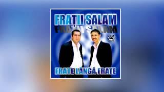 Dan Salam & Robert Salam - Eu sunt sef de smecherie ( Oficial Audio )