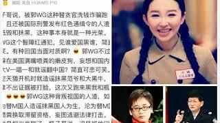 王芳回应郭文贵:被叛国红通犯抹黑是光荣