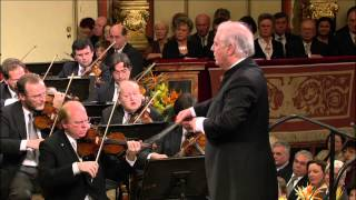 Joseph Haydn - Farewell Symphony, 4th movement
