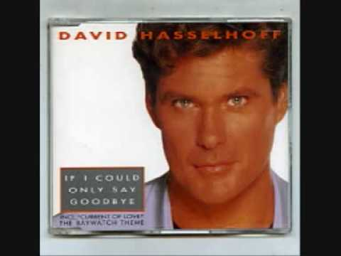 david-hasselhoff-if-i-could-only-say-goodbye-thedavidhasselhoff