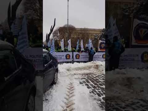 Poliţiştii şi angajaţii din penitenciare protestează sâmbătă în Capitală