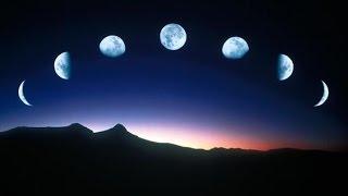 Dancing in the Moonlight - Alt-J (TRADUÇÃO)