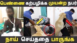 பெண்ணிடம் எல்லை மீறிய நபர் நாய் செய்ததை பாருங்க | Tamil News | Tamil Seithigal