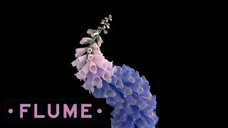 Flume - Lose It feat. Vic Mensa