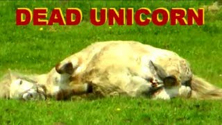 DYING UNICORN caught on tape - May 2013