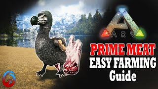 How to cook many raw meats at a time ark survival evolved