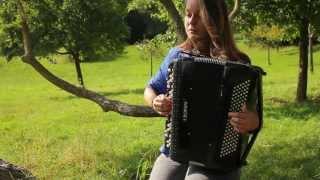 Wake me up - Avicii cover accordion