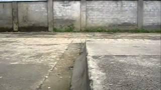 skate del coco !!! [HQ]