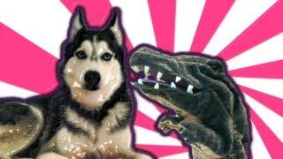 التمساح الحلقة ٥: النزاعات الكلبية   temsa7LY 1