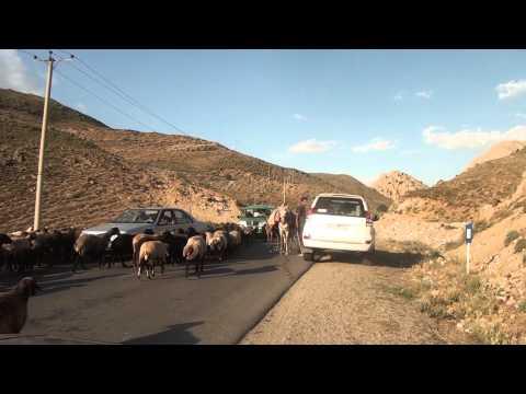 GOLF GOES AROUND trailer
