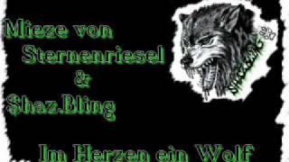 $haz.Bling und Mieze von Sternenriesel - Im Herzen ein Wolf