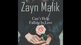 Zayn - Can't help fallin' in love (Lyrical Version)