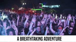 Woodland Festival - napovednik 2017