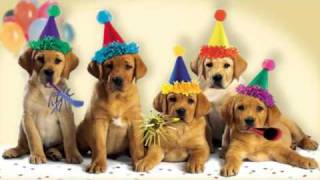 "Cute Dogs Bark the ""Happy Birthday"" Song"
