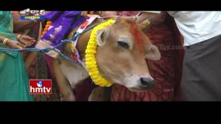 Aadhar Cards For Cows ? Central Govt To Check Cow Smuggling  | Jordar News | HMTV