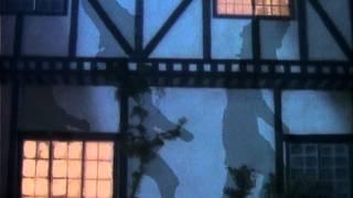 Fleetwood Mac - Everywhere  (1987)