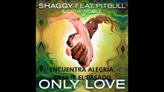 Only Love Shaggy ft Pitbull Subtitulada en Español